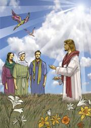 «Guardate gli uccelli del cielo: non seminano… il Padre vostro celeste li nutre. Non valete più di loro?».