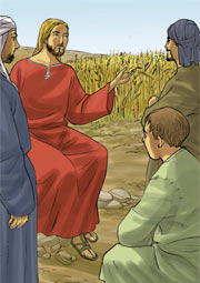 «Signore, da dove viene la zizzania?». Rispose: «Un nemico ha fatto questo!». I servi: «Vuoi che andiamo a raccoglierla?».